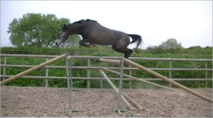 Gadoralda jumping 1