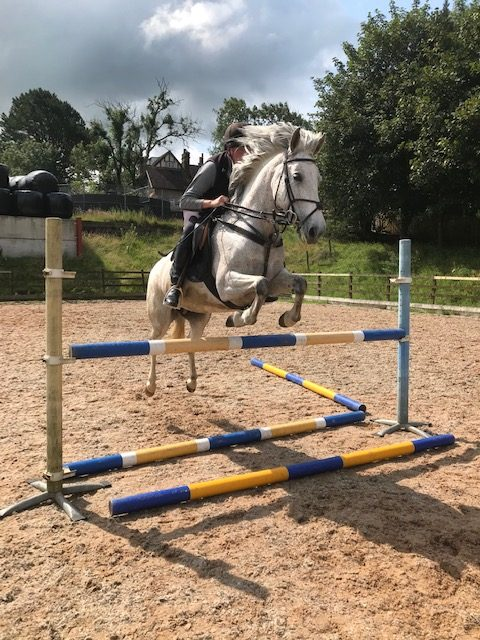 Pendle Aurora - showjumping lesson - 01.08.2019